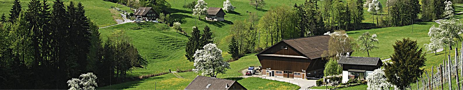 Statuts statuts chambre de commerce suisse pour la for Chambre de commerce suisse